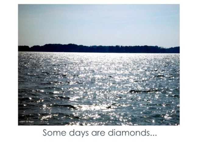 Diamond Days on Lower Machodoc Creek