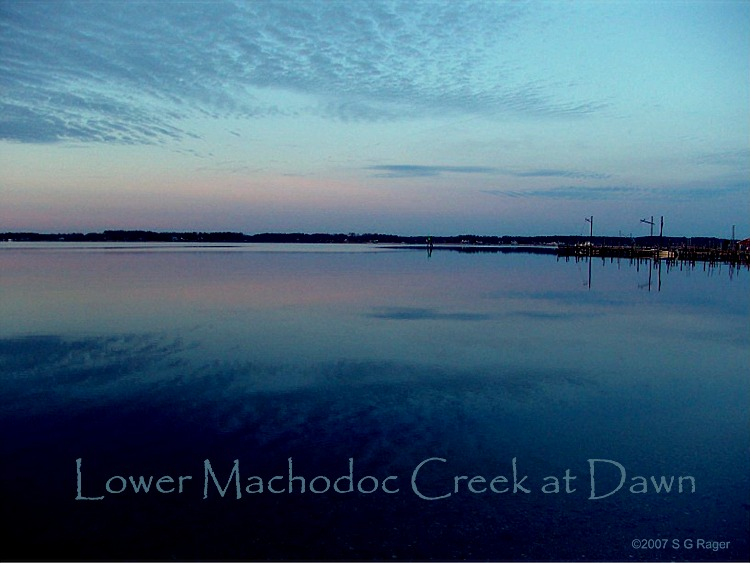 Lower Machodoc Creek at Dawn