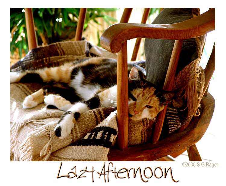 Samantha's Lazy Afternoon