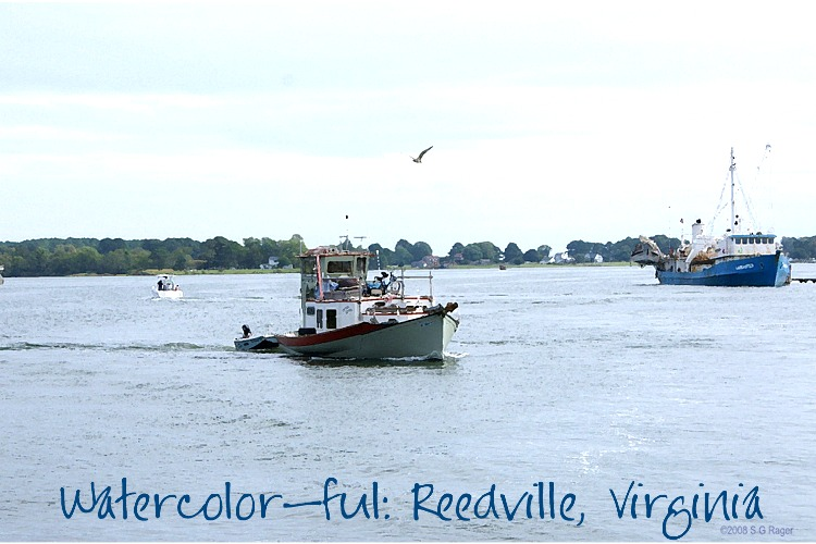 Watercolor-ful Reedville!